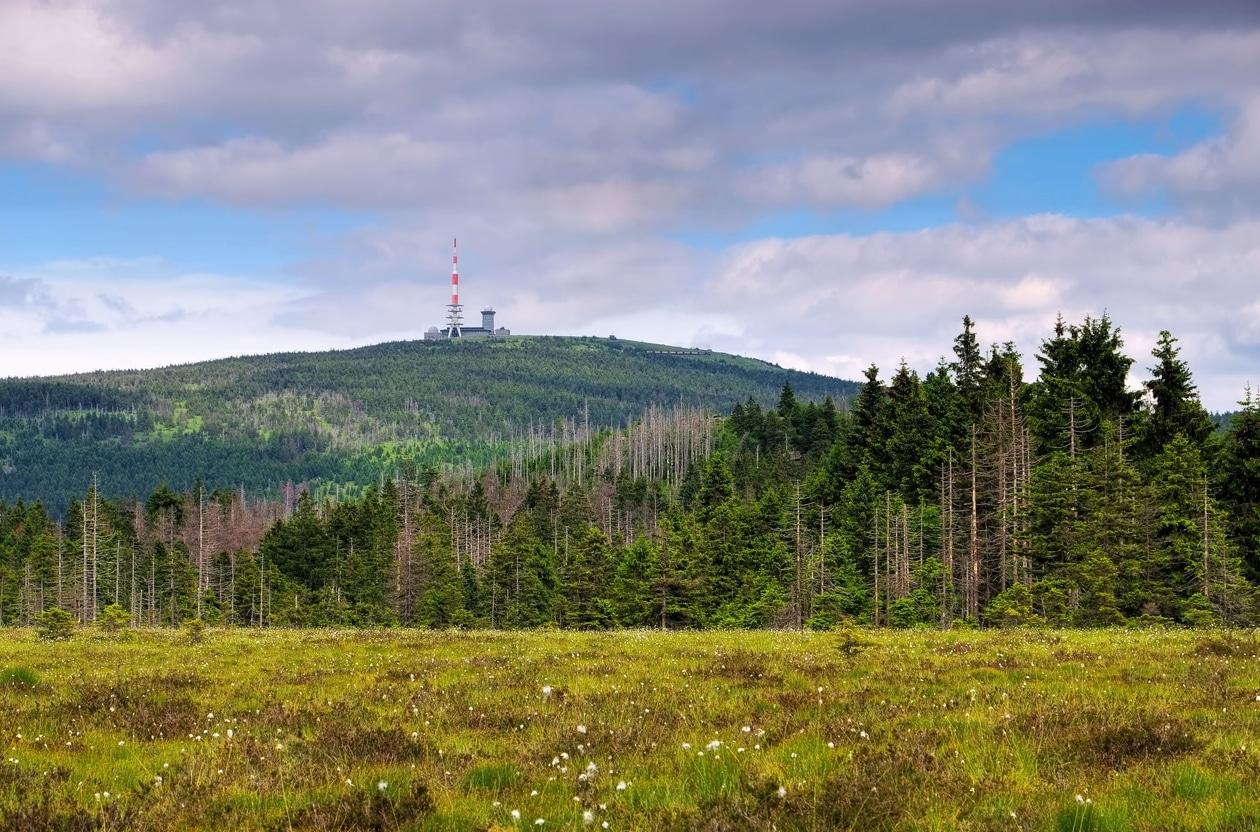 Der Brocken ruft: Gipfelsturm im Harz - Freiheit frei Haus