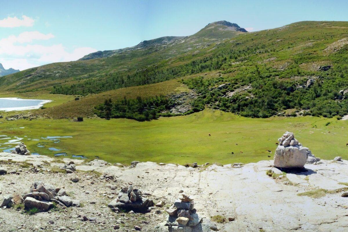 Typische Feuchtwiesen hoch in den Bergtälern