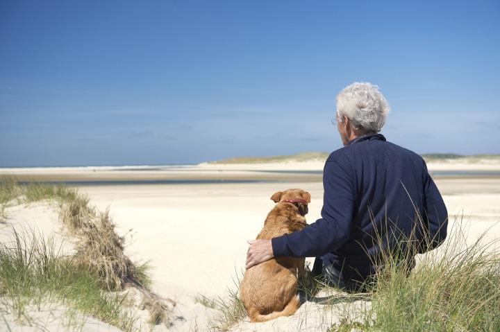 Niederlande_Strand_ThinkstockPhotos-481006305_2