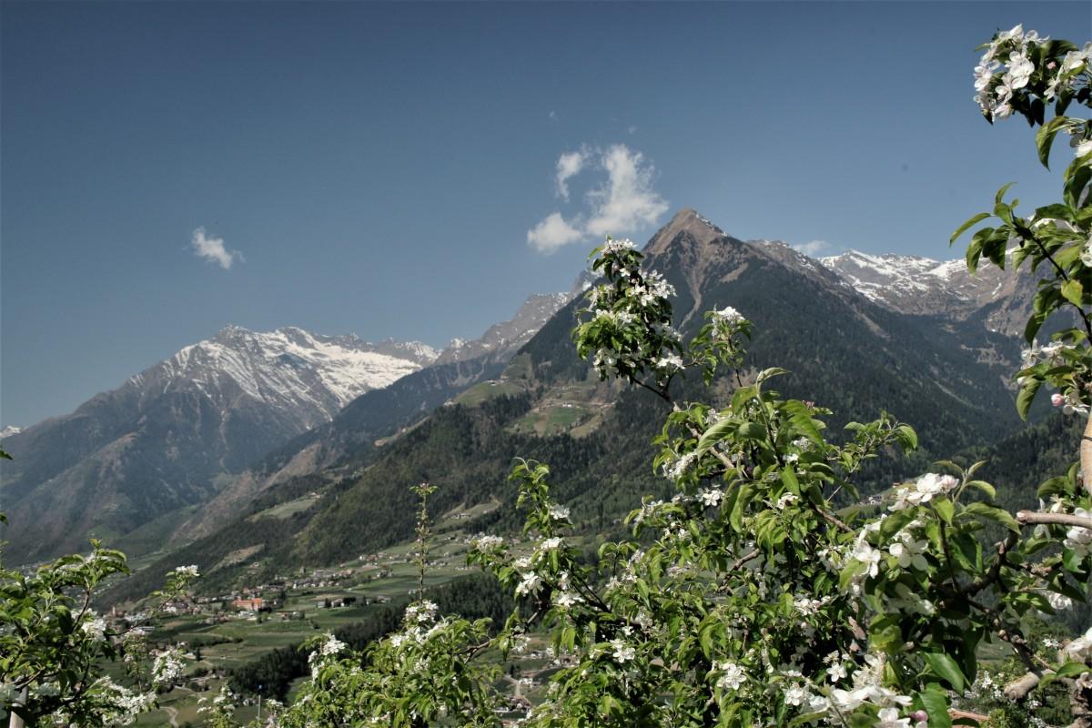 Ausblick auf der Wanderung im Vinschgau in Südtirol