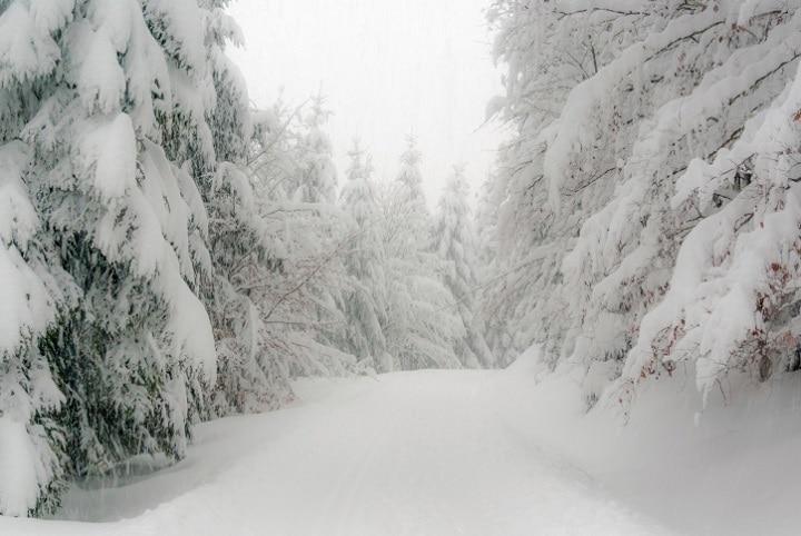 Der 140 Kilometer lange Rennsteig-Winterwanderweg zieht sich durchgängig gespurt durch den malerischen Thüringer Wald.