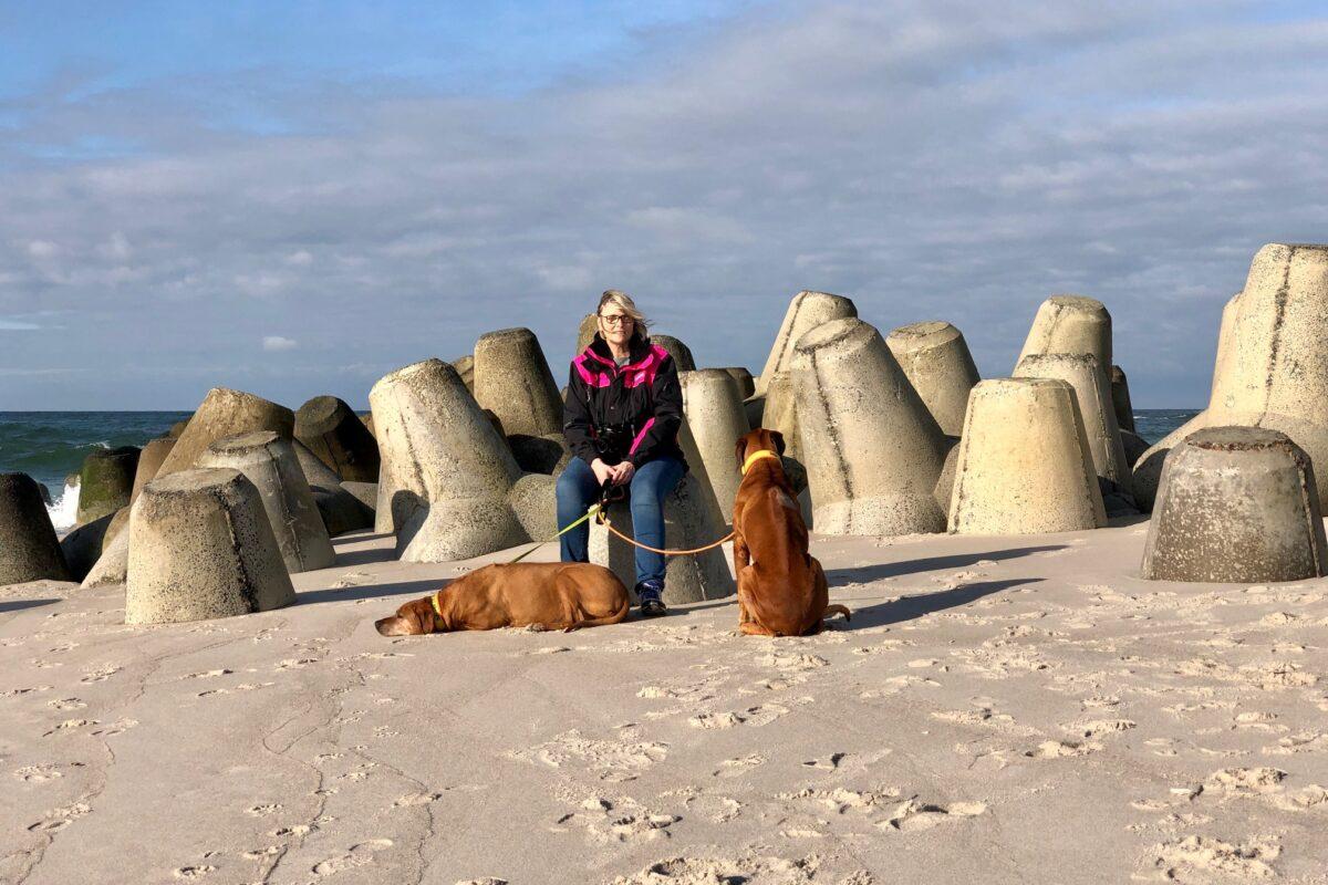 Wandern mit Hund auf Sylt an der Hoernum Odde