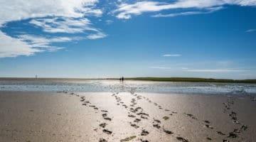 Ostsee vs. Nordsee: Wer die Wahl hat ...