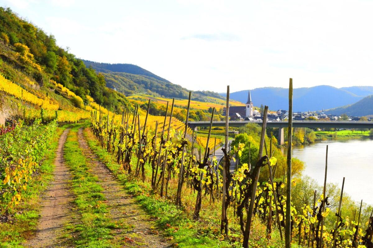 An der Deutschen Weinstraße - Entdecken Sie die Toskana Deutschlands