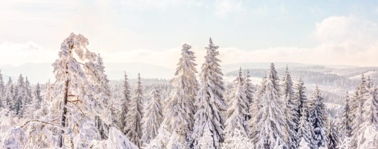 harz-winter