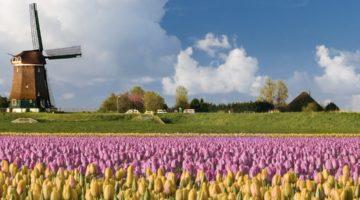 10 tolle Feriendomizile in den Niederlanden