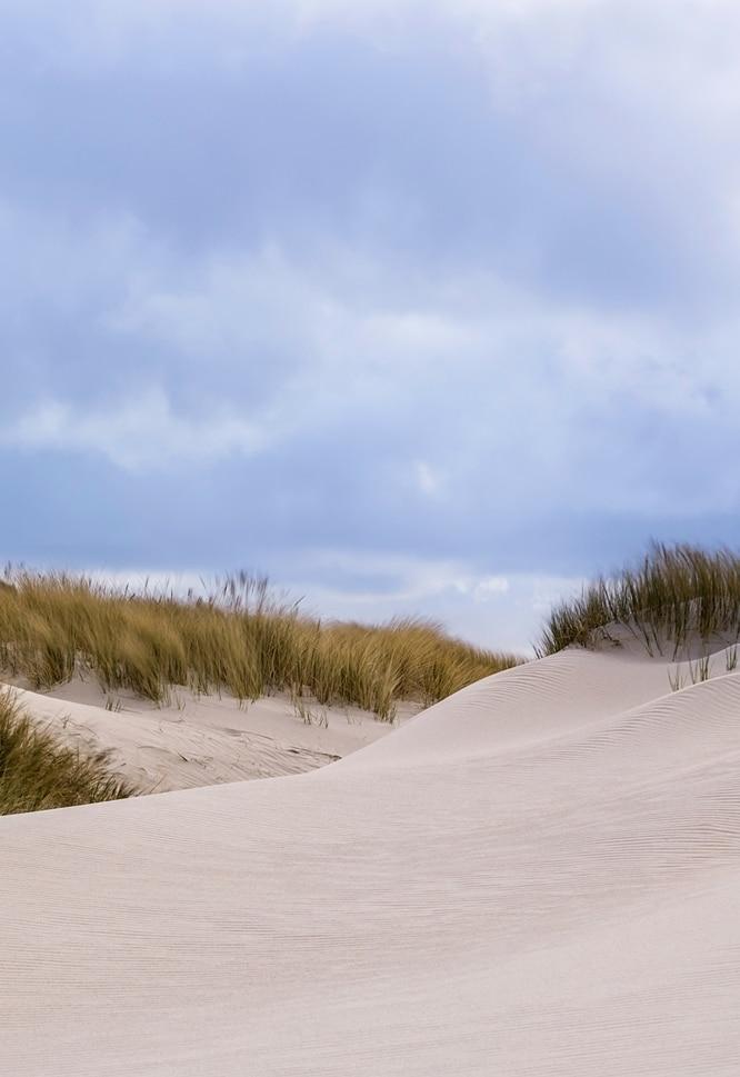 Karte Nordseeküste Niedersachsen.Die 10 Schönsten Orte An Der Deutschen Nordseeküste Freiheit Frei Haus