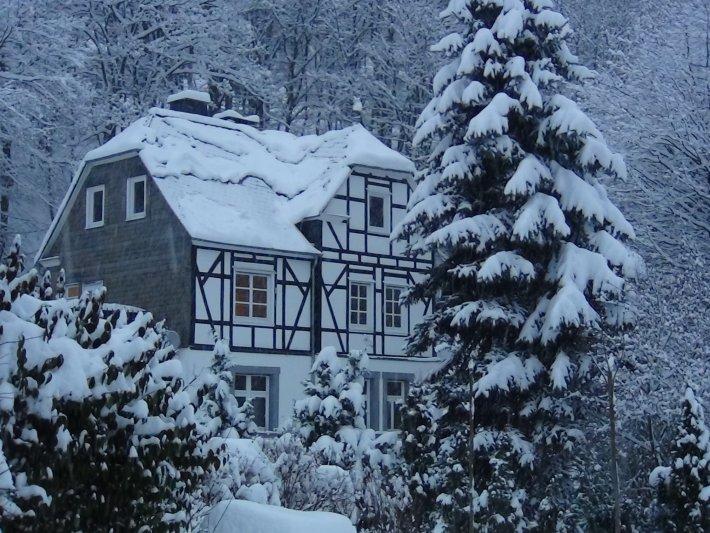 winterberg_ferienhaus_128702_1417891870