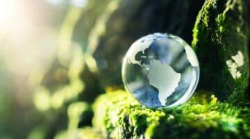 Nachhaltigkeit-Ferienwohnung