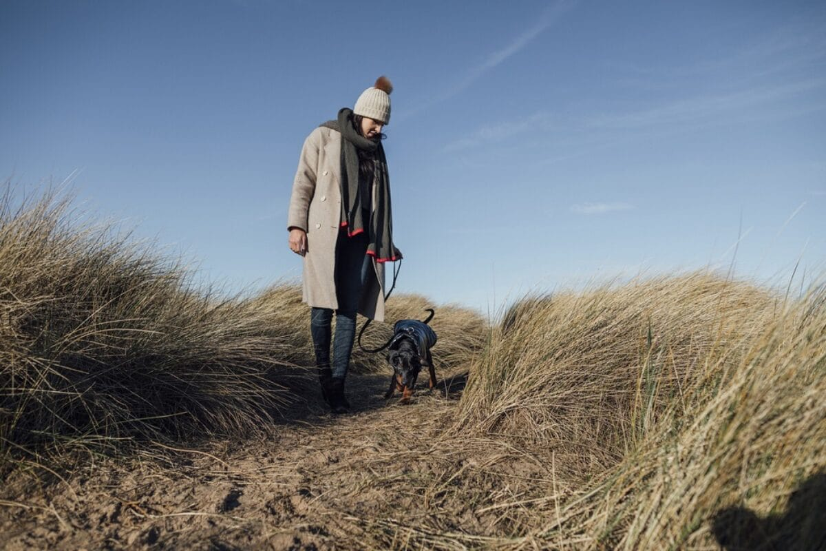 Silvester mit Hund an der Nordsee