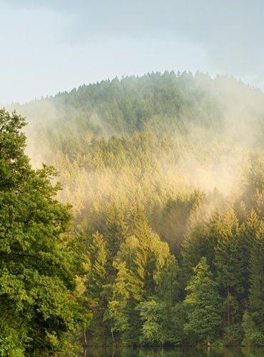 Harz - Sachsen-Anhalt